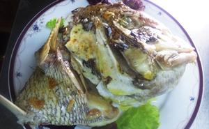 天然真鯛のカブト焼きラズベリービネガー風味