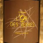 ワインのご紹介。