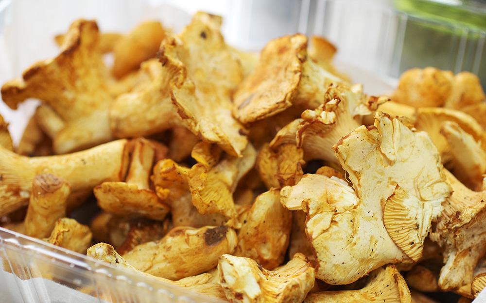 甘い香りがする上品な味わいのフランス産のキノコ「ジロル茸」