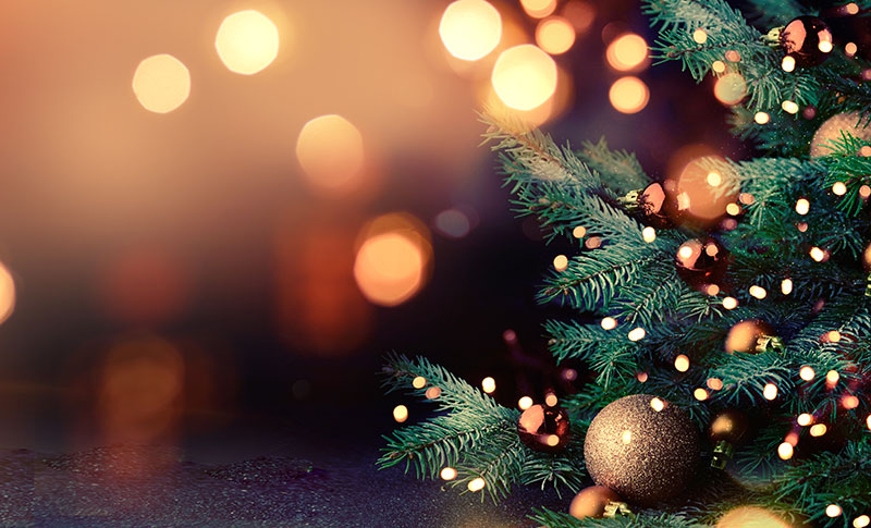 クリスマスディナー(期間:12月23日・24日・25日)
