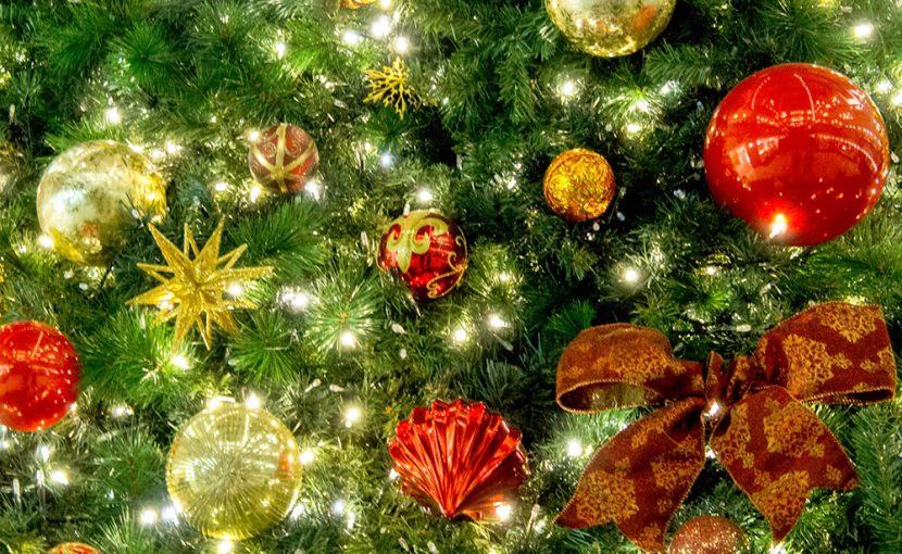 クリスマスはフレンチで楽しむ、ランチ・ディナー「Xmas2019ご案内」